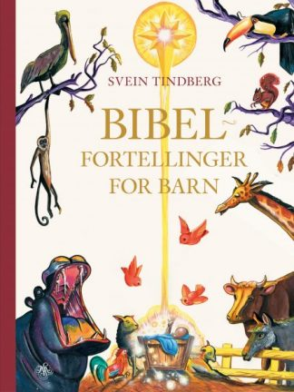 Bibelfortellinger for barn
