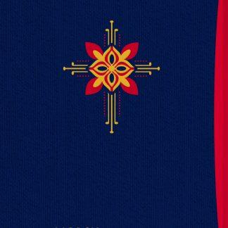 Norsk salmebok 2013 : Gave